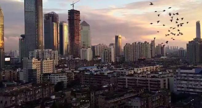 大户型将走俏,深圳保障房土地如何供应?