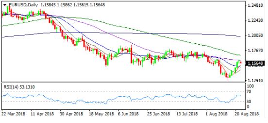 Fed纪要限制美指跌幅欧元续涨录五连阳